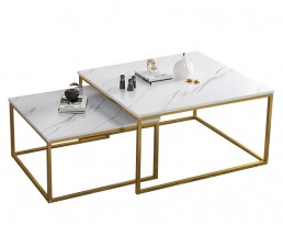 Coffee Table E5185 - White & Golden Legs